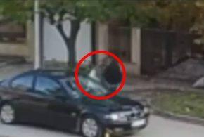 UZNEMIRUJUĆI VIDEO: Muškarac udara psa od beton pa ga ubacuje u gepek (VIDEO)